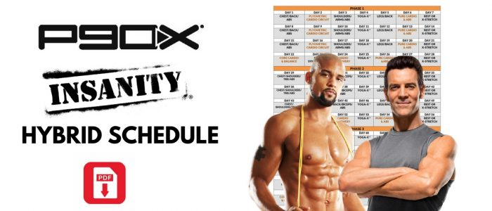 P90X Insanity Hybrid Workout Schedule Download